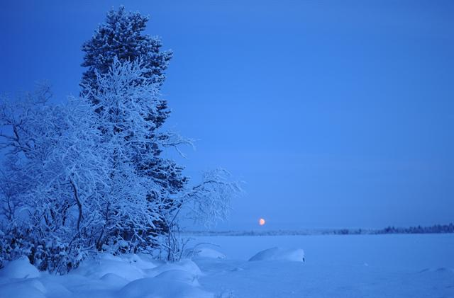 Polar night foto